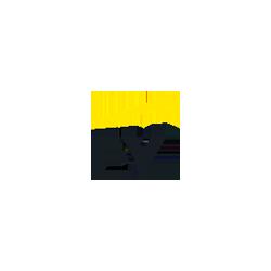 Partner_EY