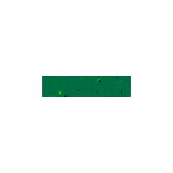 Partner_Irideos
